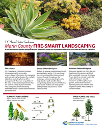 Fire-smart landscaping handout image