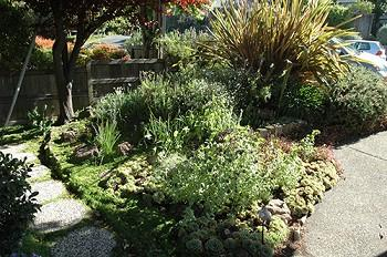 GS Front Yard 5Small