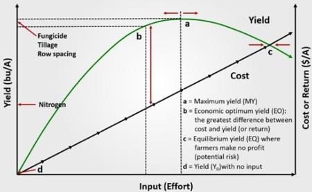 Economic optimum vs. maximum yield. From Lauer (2015).