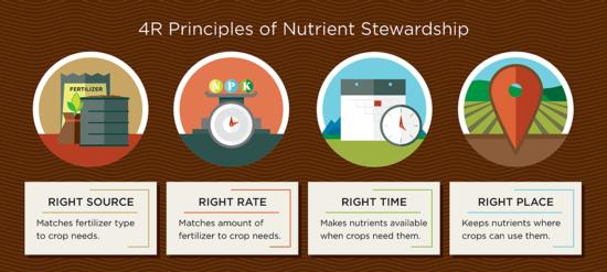 The 4Rs of nutrient management. From NutrientStewardship.com.