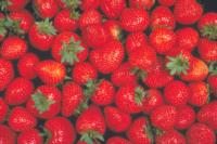 strawberry_quality