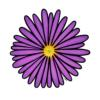 aster025