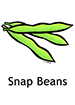 snapbeans_english250x350