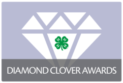 Diamond Clover Awards button