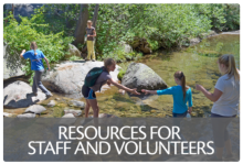 Resources for Staff and Volunteers