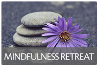 At the Mindfulness Retreat, increase and gain personal skills in leading a healthy lifestyle and to be a healthy advocate in your community.