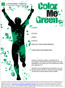 Color Me Green 5K Run flyer template-Spanish
