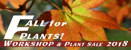 FallForPlants Graphic-432px