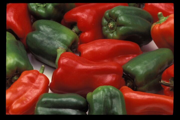 Several green and red chile peppers. ©UC Regents