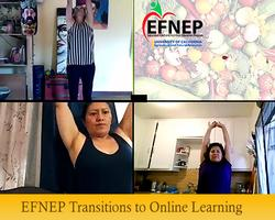 EFNEP-Transitions-to-Online-Learning-Lg-Banner