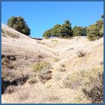 Dry California grasslands image