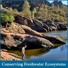 Conserving Freshwater Ecosystems