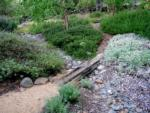 dry creek bed2