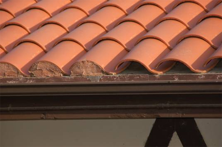 Metal Bird Stop For Tile Roofs 12 300 About Roof
