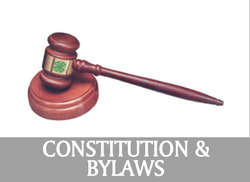 Link to Council Constitution and Bylaws Page