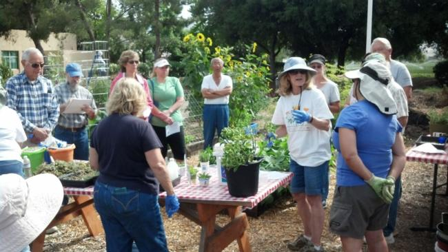 South County Teaching and Demonstration Garden class