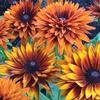 Orn-Rudbeckia-Indian-Summer2-MG-Tricia-Speth
