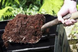 compost on shovel