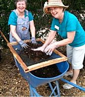 Master Gardeners sifting compost