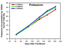 Fig. 2. Potassium accumulation by 1000lbs kernel yield from K rate treatment in 2010. Each point represents mean and std error.