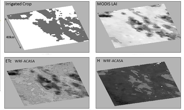 Fig. 3. Southern San Joaquin Valley- WRF-ACASA simulation for experimental orchard. Kern Co., June, 2008