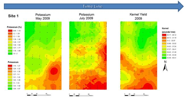 Fig. 1. Tissue N in May and June, yield data, Site 1. 2009