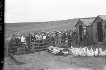 Tomales Union High School Agricultural Tours, March 1929