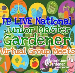 JR MG National live
