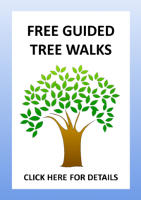 Fuller Park MG Docent Guided Tree Walks