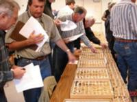 Fig. 11. Growers participate in nut evaluation.
