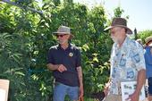 Chuck Ingels, left, presented a workshop on espalier training for fruit trees at Fair Oaks Horticulture Center in May 2018. Photo by Pam Bone