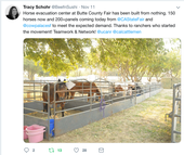 During evacuation from the Camp Fire, Tracy Schohr tweeted information for people seeking refuge for large animals.