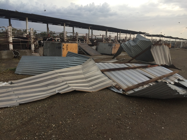 High winds tore off corrugated metal roofing at Desert REC.