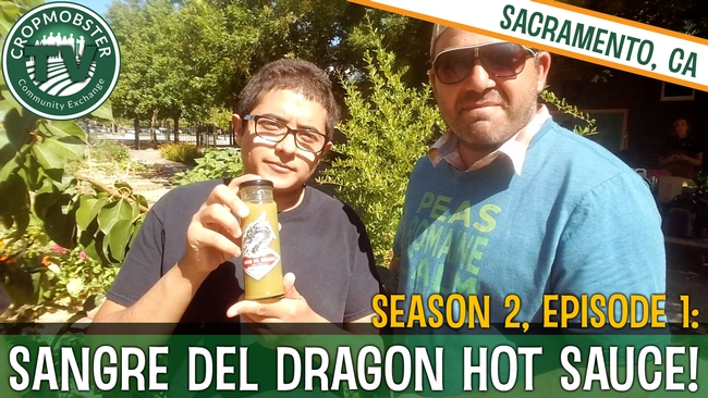 Using a mobile phone and selfie stick, CropMobster's Nicky Bobby interviews Sacramento high school students about their start-up: Sangre del Dragón Hot Sauce company.