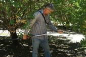 Blake Sanden developed salt tolerance thresholds for high-production California pistachios in the San Joaquin Valley.