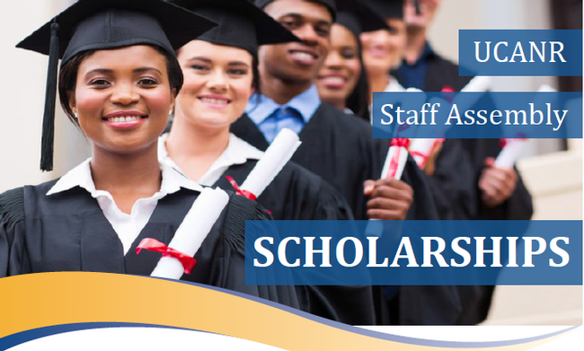 staff assembly scholarships