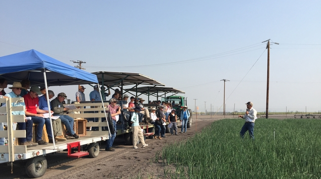 Field day attendees sit on benches on a trolley, listening to Rob Wilson, who is standing in an onion field.