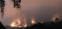 River Fire burning at Hopland Research and Extension Center in July 2018. for ANR Report Blog