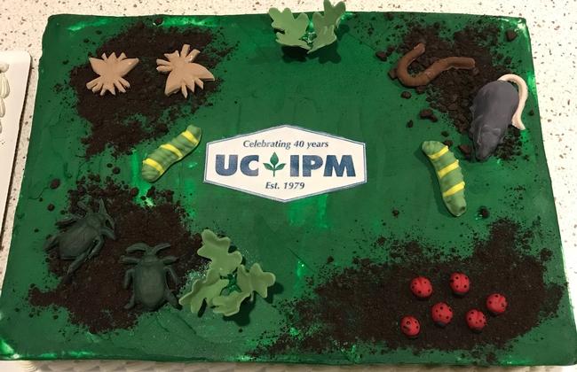 UCIPM cake