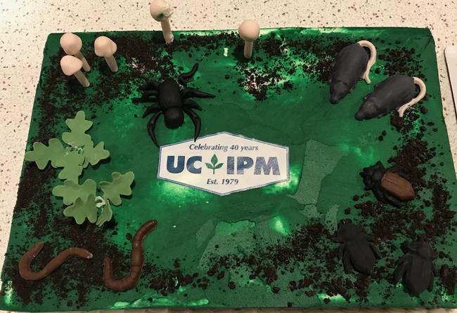 UCIPM 40th cake