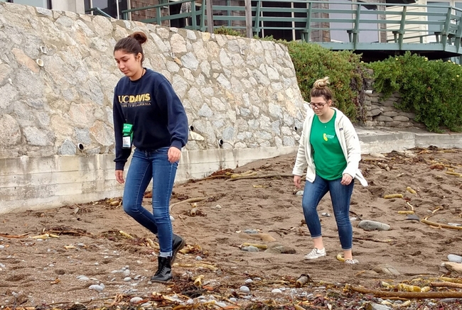 4-Hers take a walk along the shore during a mindfulness retreat.