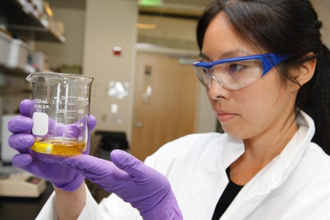 Selina Wang evaluates oil quality.