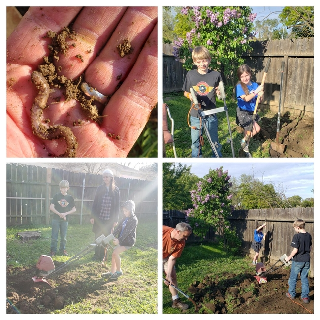 Michael Zwahlen's family really digs gardening. One of many ANR staff members who participated in ANR GROW, Zwahlen planted vegetables.