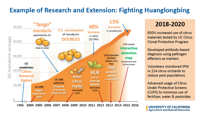 A timeline of citrus research, from 1905 establishment of Citrus Research Station, to 2007 Tango mandarin patent, to 2014 interactive map to report Asian citrus psyllid and huanglongbing disease.