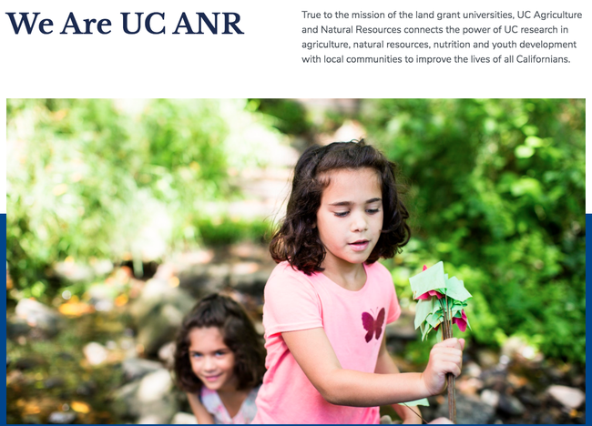 Wondering what ANR's new web interface will look like? A preview is available for feedback.