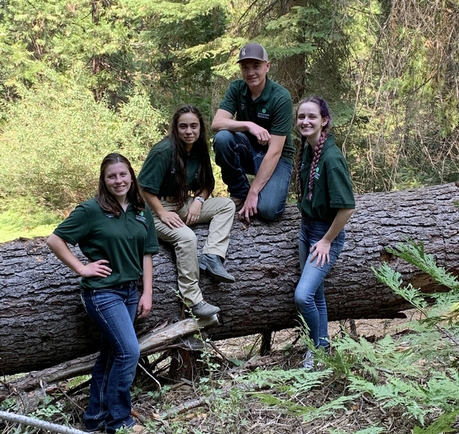 From left, Nicole Ward, Ciara Zito, Clayton Pennebaker and Caydin Simonian. The Fresno County 4-H Ambassadors met in the Sierra Nevada in early 2020, before COVID-19 restrictions and before the Creek Fire struck.