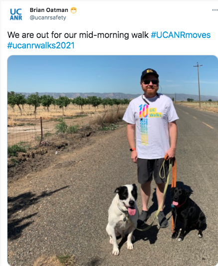 Brian Oatman and his dogs also won a social media award for this selfie tweet.