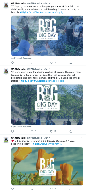 California Naturalists received recognition for their Big Dig Day Twitter campaign.