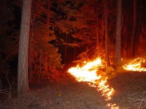 firefuel-burn300
