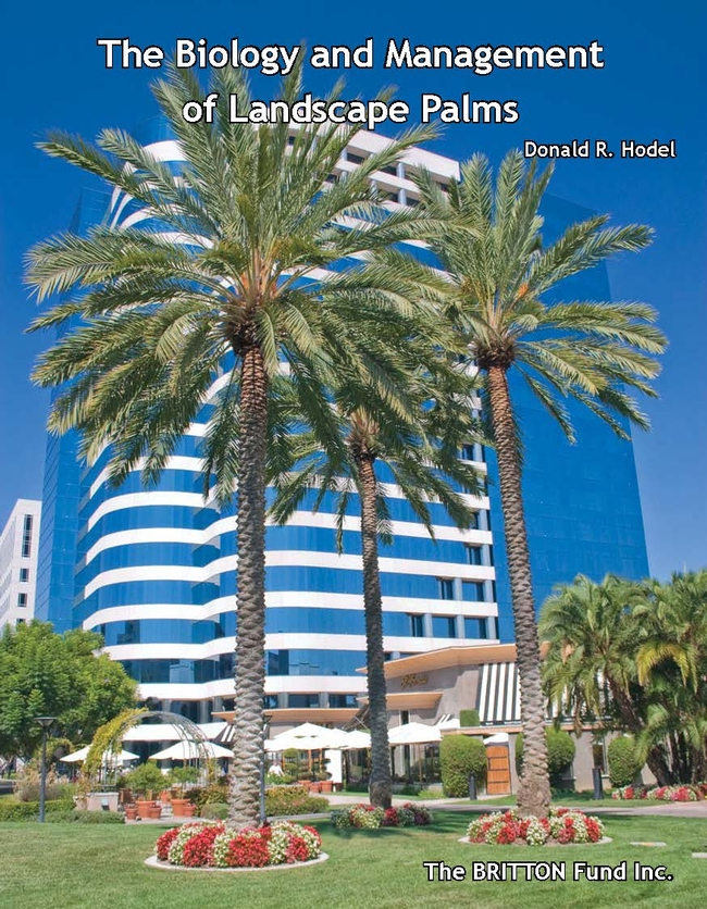 book cover showing palm trees